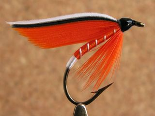 Trout-fin