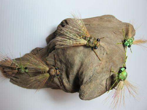 Cicadas 8